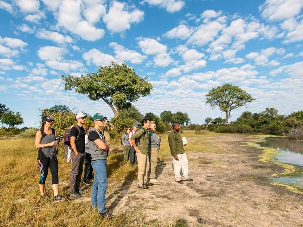 Southern Africa small group tour