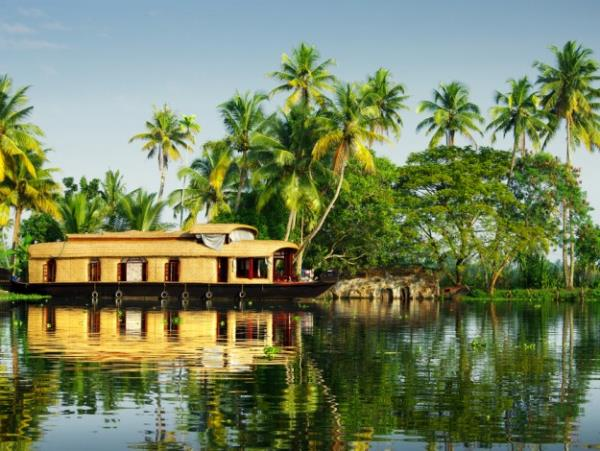 Tiger and Kerala beaches tour in India