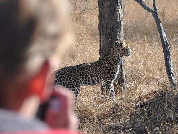 Photography safari in South Africa
