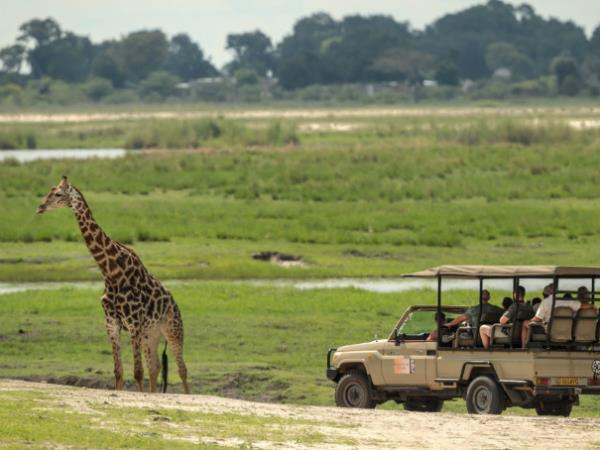 Zimbabwe, Botswana & South Africa Safari tour  Helping Dreamers Do