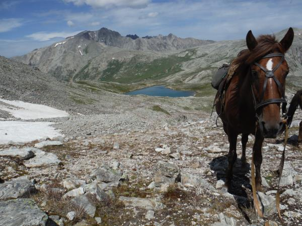 Kazakhstan horse riding holiday