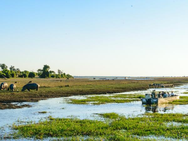 Botswana family Safari with teenagers holiday