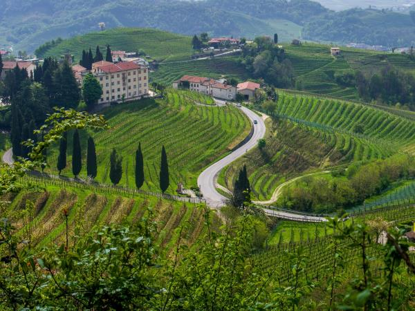 Cycling holiday in the Prosecco Hills, Italy