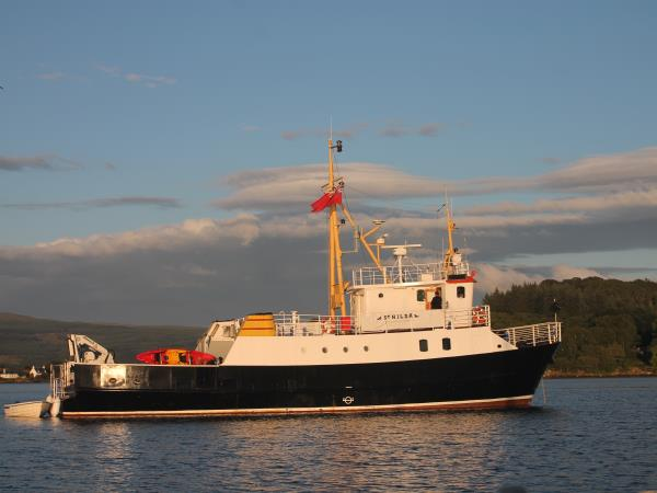 Wildlife cruise in Isle of Skye and Small Isles