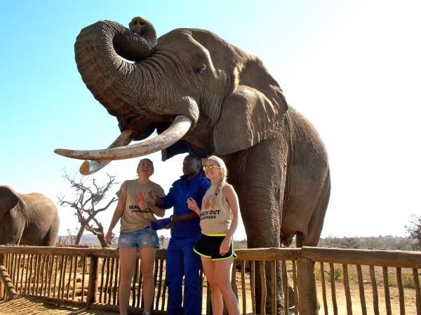 Volunteering holiday in South Africa