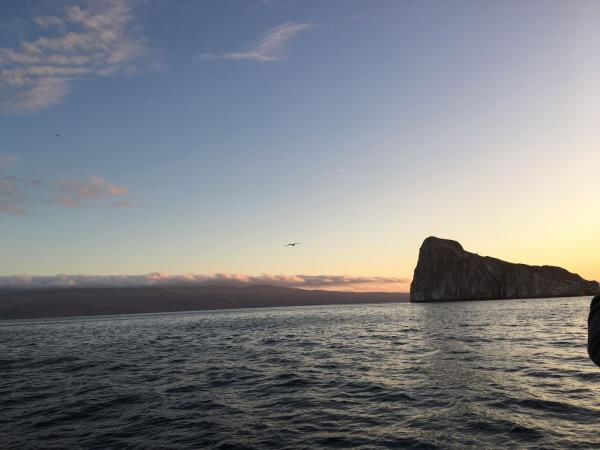Galapagos diving expedition