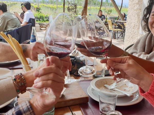 Horse riding and Mendoza wine tour in Argentina