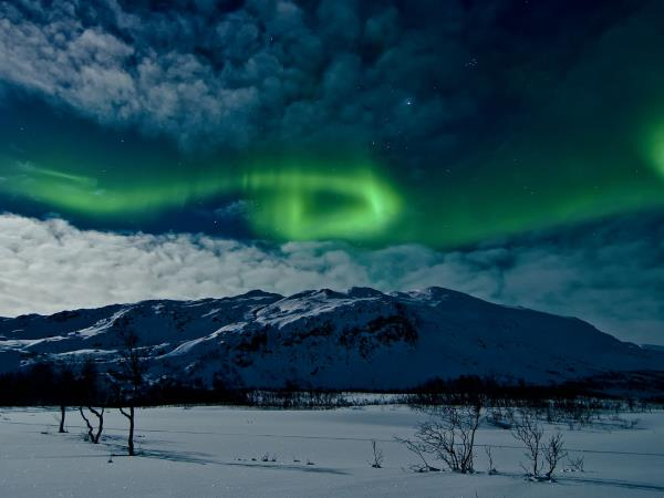 Lofoten Islands and Svalbard northern lights safari