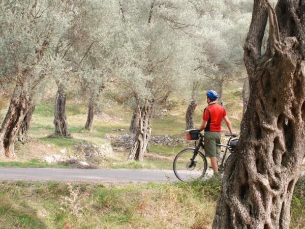 Self guided cycling holiday in Montenegro