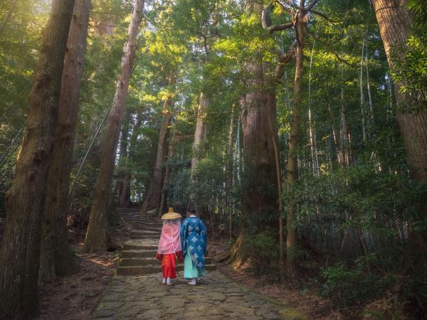 Walking holiday in Japan