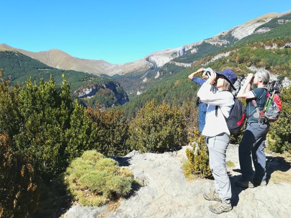Cooking and walking holiday, Spanish Pyrenees