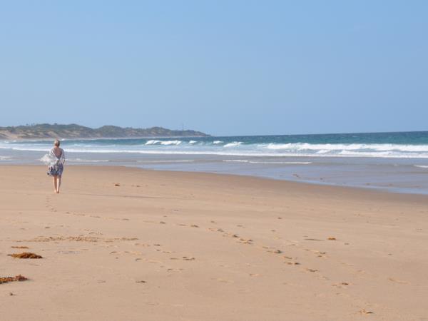 Beach Holiday With Ocean Safaris