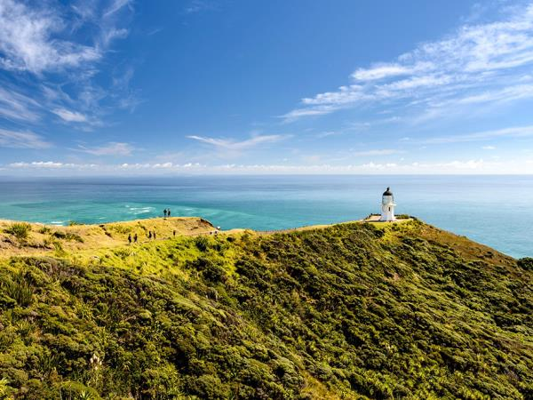 Christmas tour of Northland, New Zealand