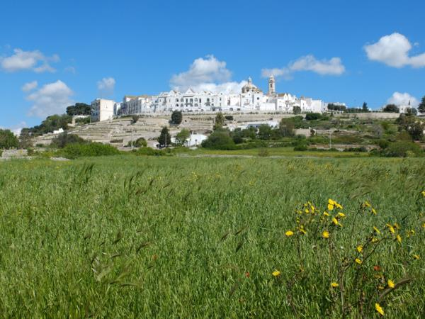 Puglia nature food and culture holiday, small group