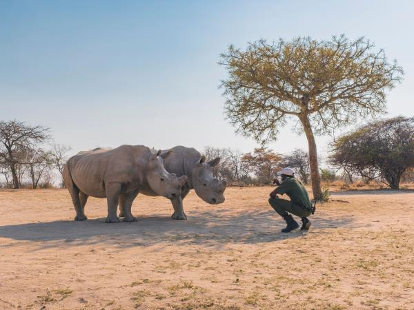 Family safari in Botswana and South Africa