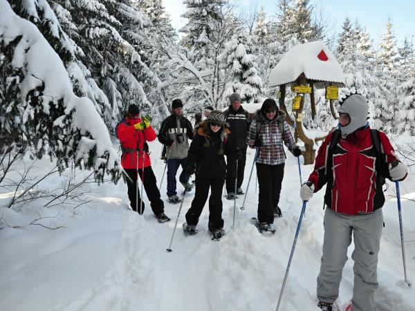 Winter activity holiday krakow and Tatras, Slovakia