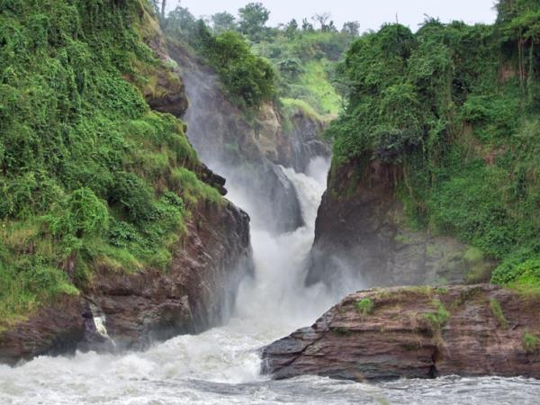 Uganda gorilla safari and Murchison Falls holiday