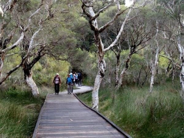 Bibbulmun Track guided group walk, Australia
