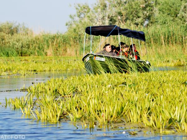Danube Delta birdwatching in Romania