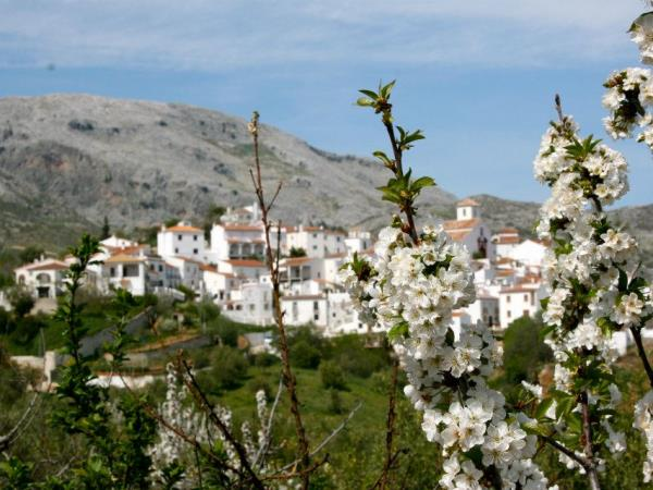 Wellness holiday in Andalucia, Spain