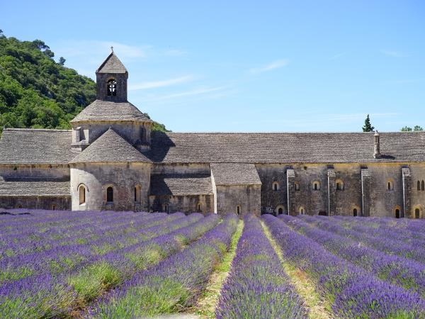Provence cycling and wine holiday