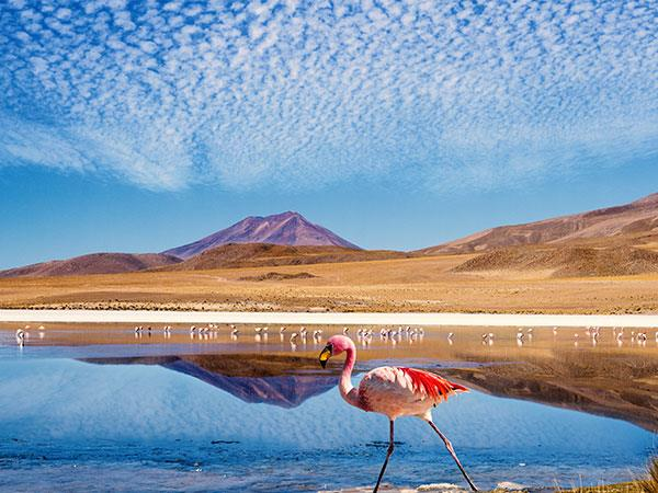 Highlights of South America holiday