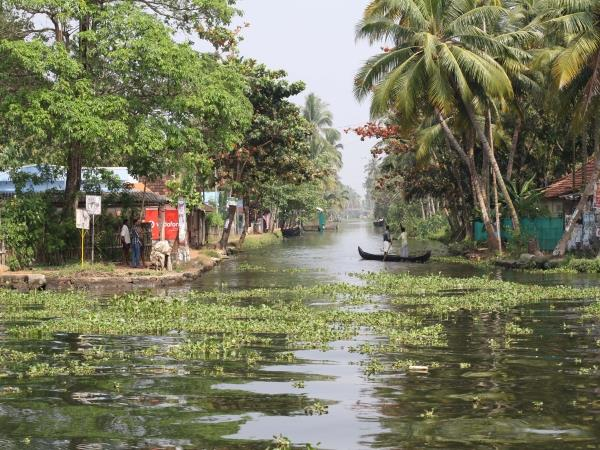 Elements of Kerala tailor made tours