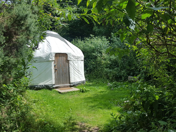 South Downs budget campsite with yurts, England