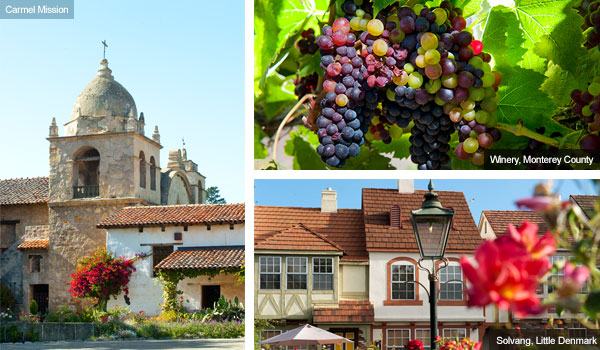 Carmel Mission, grapevines at Monterey and Little Denmark