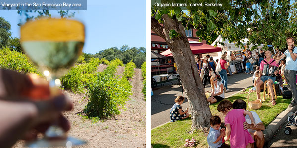 Wine country and farmers market, Berkeley