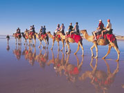 Camel trek in Broome, Western Australia. Photo by Tourism Western Australia