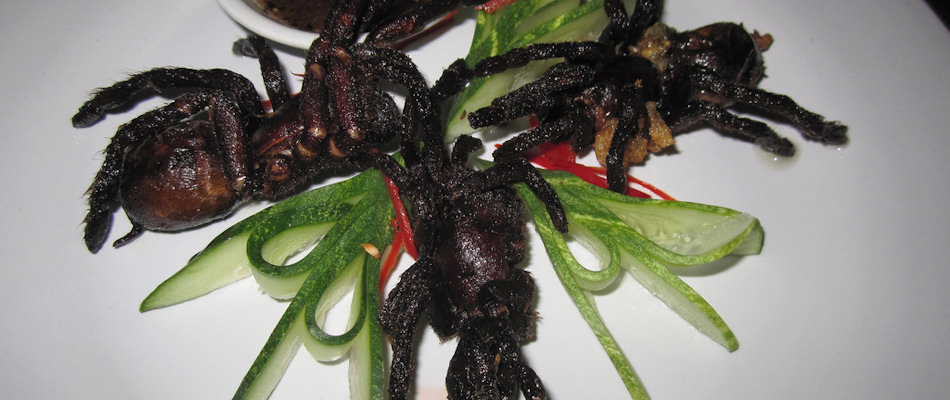 Stir-fried tarantulas (Photo by istolethetv)