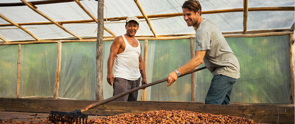 Volunteer raking cacao beans at Chocal's nursary