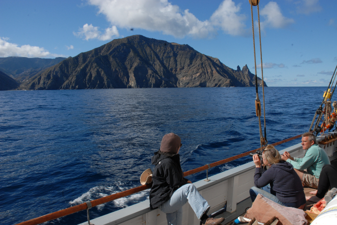 Whale watching cruise in the Canary Islands