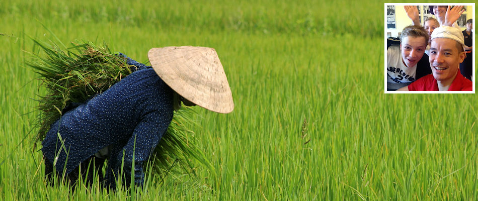 Rice paddy and (inset) Khanh Dinh