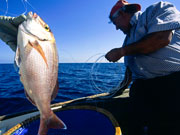 Fishing in Menorca. Photo by Menorca Tourist Board