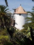 The Museo Agricola el Patio, Lanzarote. Photo by Nick Haslam