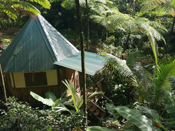 Dominica rainforest eco lodge
