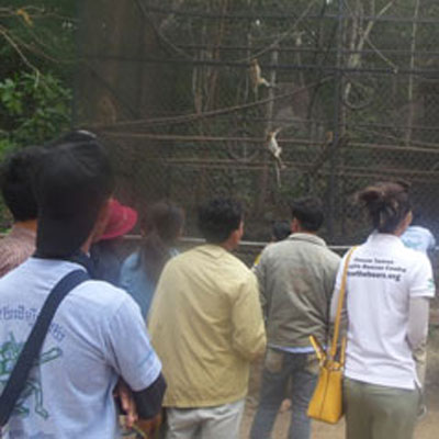 Youths looking through enclosure