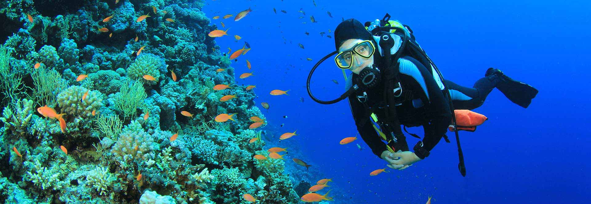 Red Sea Diving Holidays Scuba Diving Holidays In The Red Sea - The 10 best scuba diving locations in the world