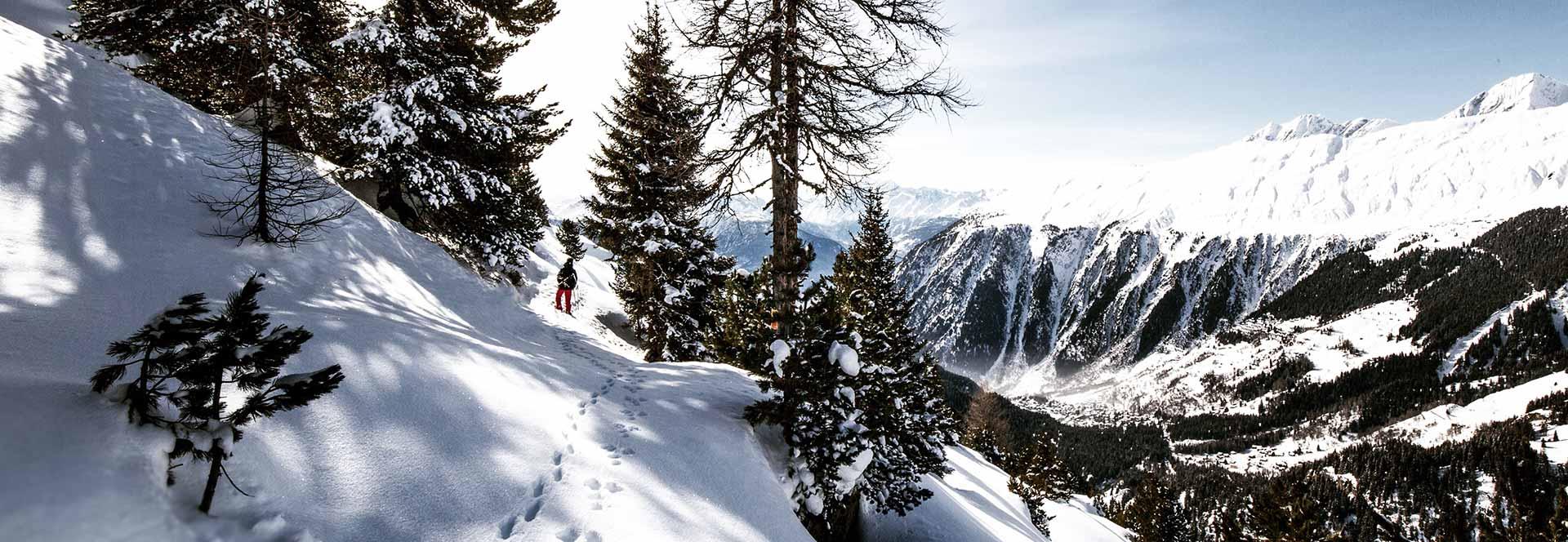 winter holidays winter sports winter holidays helping dreamers do