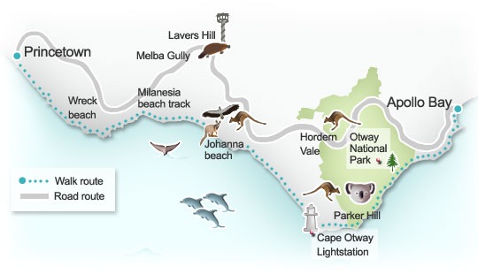 Apollo Bay to Princetown route map. Illustration by Lisa Joanes