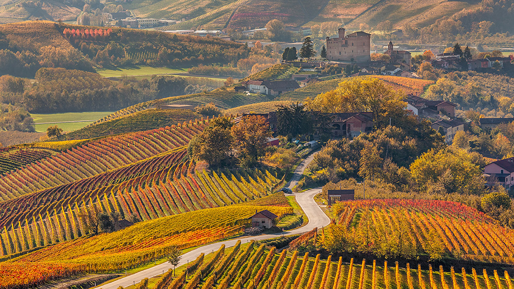an introduction to the piedmont wine region in italy