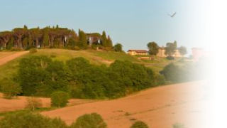 Agrotourism and farmstay holidays in Italy