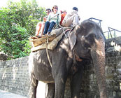 Riding on elephants