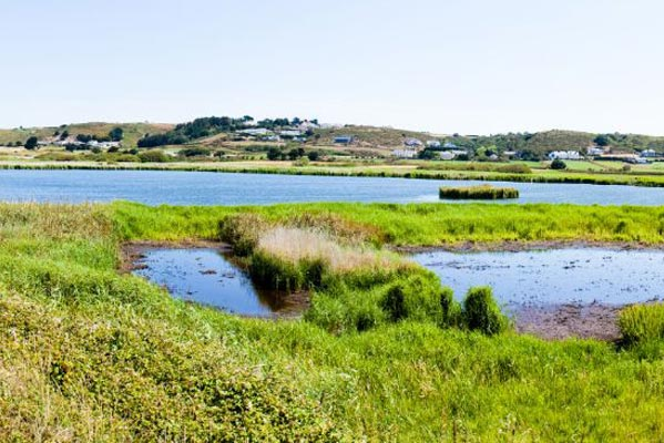 St Ouen's Pond, Jersey. Photo from Jersey Tourist Board