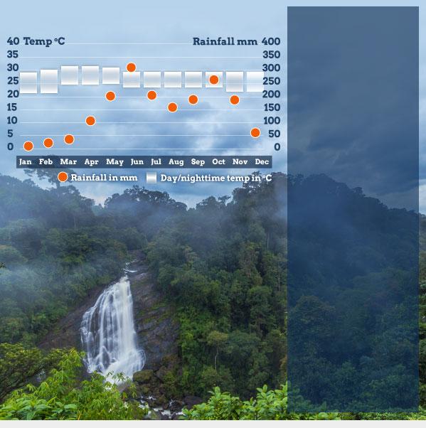 Thiruvananthapuram Travel: Best Time To Visit Kerala. Responsible Travel Guide To The