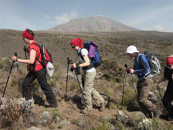 Rongai Route Kilimanjaro climb and Tanzania safari