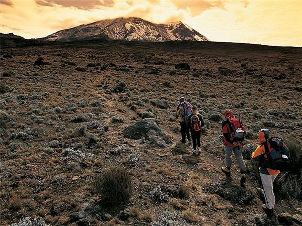 Kilimanjaro Climb, Serengeti safari and Zanzibar