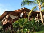 Osa Peninsula rainforest wildlife lodge in Costa Rica